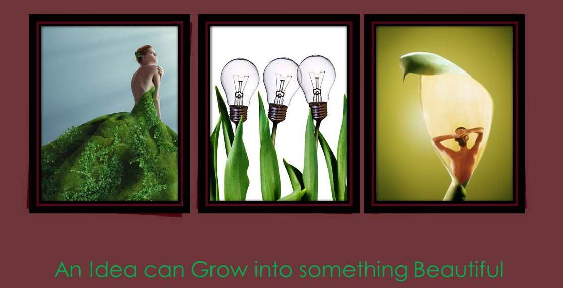 An Idea can Grow into Something Beautiful mmpiher www.killingmycareer